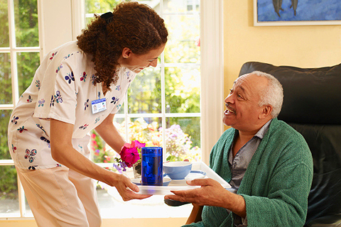Home health aide is a trained person who can come to a veteran s home