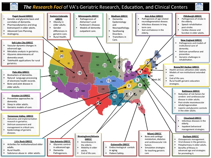The Research Foci of Geriatric Research, Education, and Clinical Centers