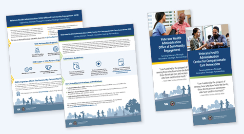 Covers of the OCE and CCI brochures and fact sheets.