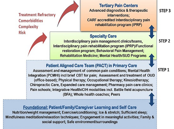 stepped care model of pain