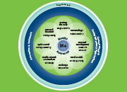 Circle of Health graphic showing a concentric circle with eight self-care areas