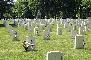 Picture of Woodlawn National Cemetery