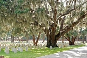 Picture of Beaufort National Cemetery