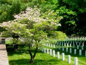 Picture of Staunton National Cemetery