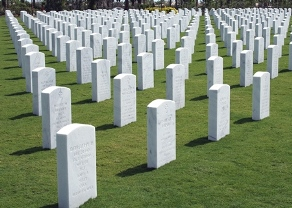 Picture of Fort Jackson National Cemetery