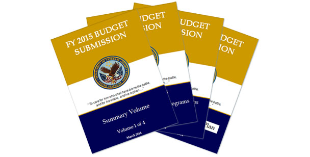 2015 President's Budget Request for V