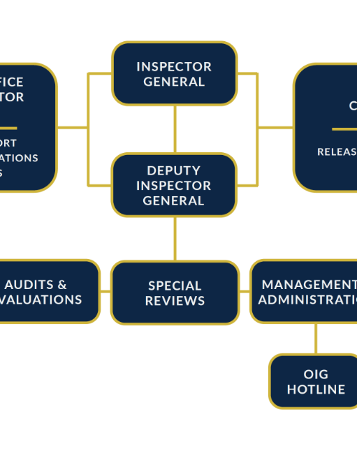 Icon of the OIG organization chart