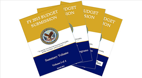 2015 President's Budget Request for VA