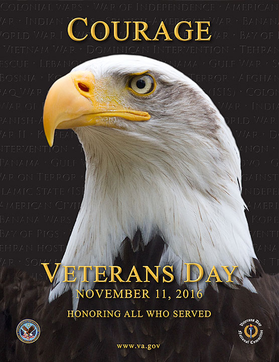 Veterans Day 2016 ~ Courage