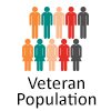 Veteran Population Icon